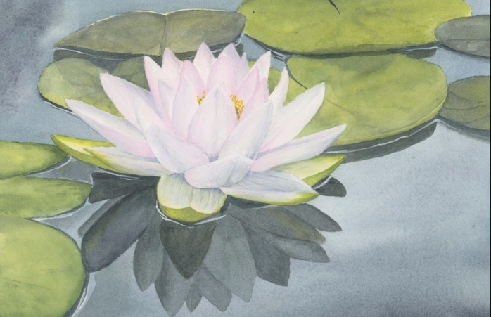 Waterlily painting.